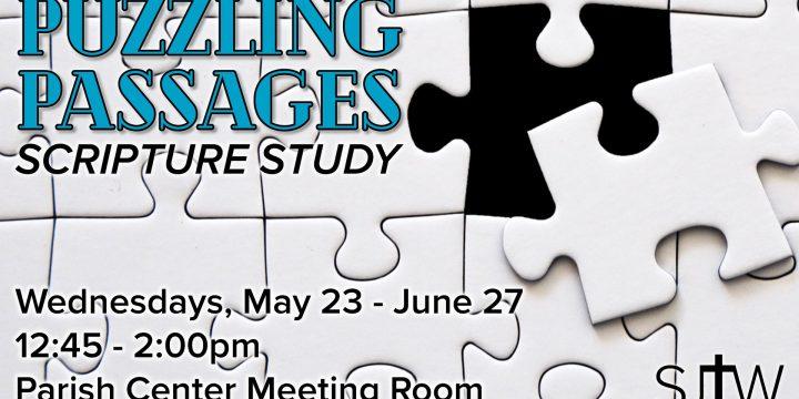 Puzzling Passages Scripture Study