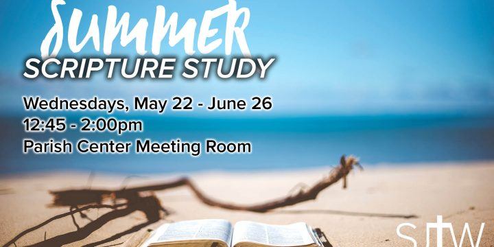 Summer Scripture Study
